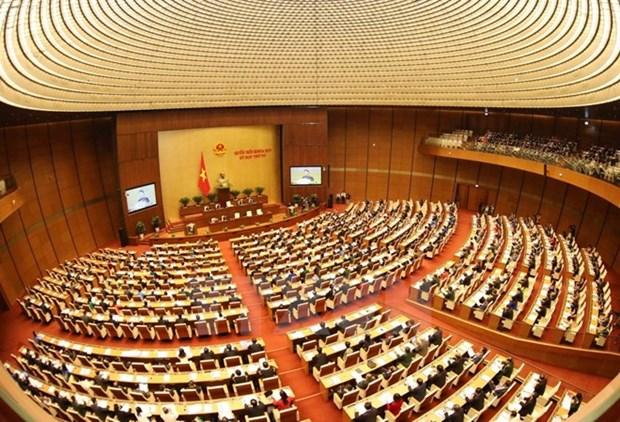 L'Assemblee nationale debat de deux projets de loi hinh anh 1