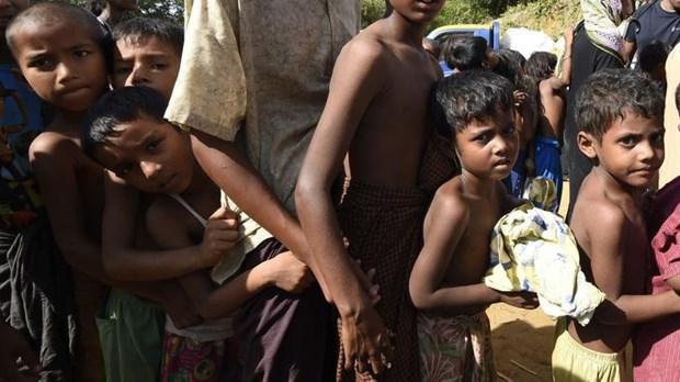 Le Bangladesh et le Myanmar discutent du rapatriement des Rohingya hinh anh 1