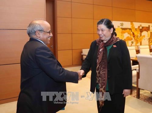 Tong Thi Phong recoit le representant de l'UNICEF au Vietnam hinh anh 1