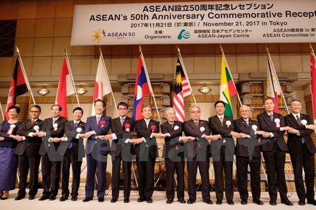 Le Japon estime les contributions de l'ASEAN a la paix et a la prosperite de la region hinh anh 1