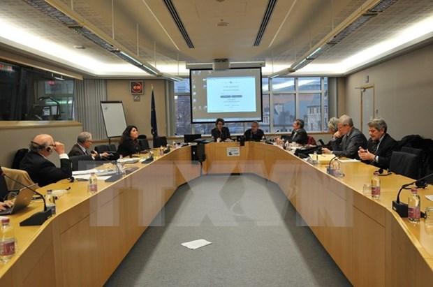 La Mer Orientale au menu d'une conference au Parlement europeen hinh anh 1