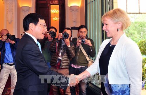 Le Vietnam et la Suede veulent renforcer leurs relations multiformes hinh anh 1