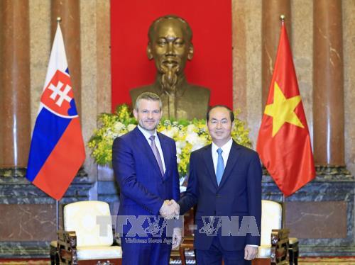 Le president Tran Dai Quang recoit un vice-PM slovaque hinh anh 1