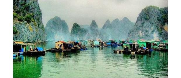 Environ 1.700 milliards de dongs pour preserver les villages de pecheurs de la baie d'Ha Long hinh anh 1