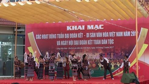 Preserver et valoriser les patrimoines culturels vietnamiens hinh anh 1