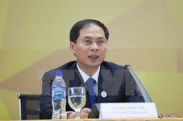 Valoriser les acquis de l'annee de l'APEC 2017 hinh anh 1