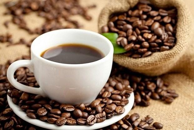 Bond des exportations nationales de cafe en Nouvelle-Zelande hinh anh 1