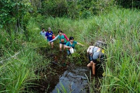 Les jeunes citadins vietnamiens trouvent randonnee a leur pied hinh anh 3