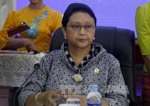 L'Indonesie s'engage a faire avancer l'ASEAN hinh anh 1