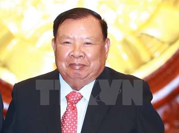 Le president laotien rencontre des responsables de l'Association d'amitie Vietnam-Laos hinh anh 1