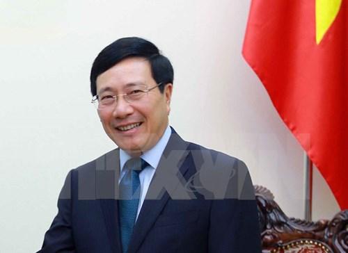 2017, l'une des annees les plus reussies pour la diplomatie vietnamienne hinh anh 1