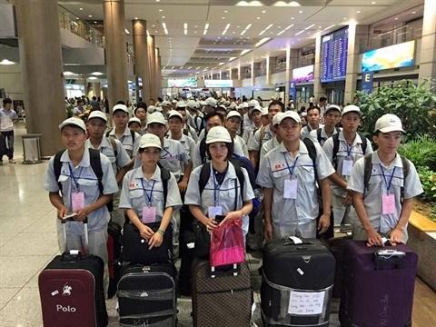Un demi-million de Vietnamiens travaillent a l'etranger hinh anh 1