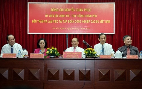 Le chef du gouvernement travaille avec le Groupe de caoutchouc du Vietnam hinh anh 1