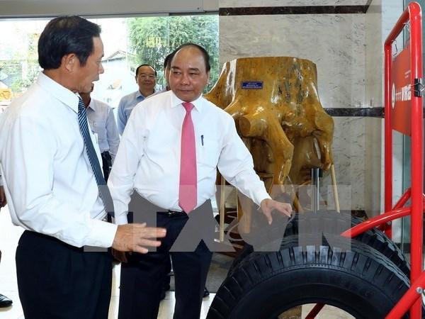 Le chef du gouvernement travaille avec le Groupe de caoutchouc du Vietnam hinh anh 2