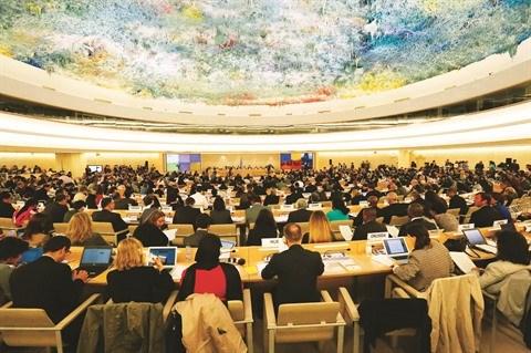 Droits de l'homme : les realisations les plus marquantes de 2017 hinh anh 1