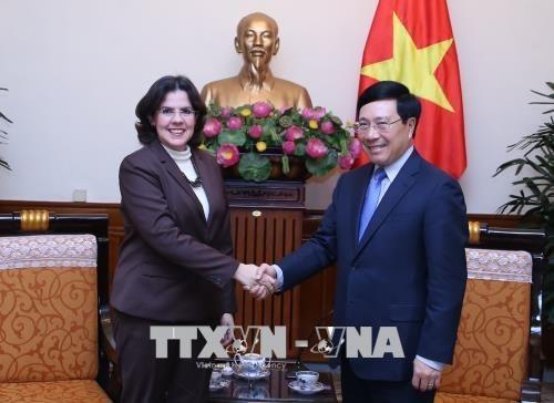 Le vice-Premier ministre Pham Binh Minh recoit la nouvelle ambassadrice de Cuba hinh anh 1