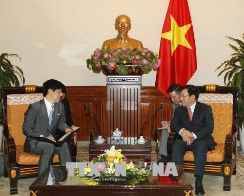 Le Vietnam estime les APD accordees par le Japon pour son developpement hinh anh 1