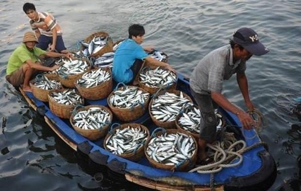 Mer Orientale: Cooperation dans la gestion de la peche et la protection de l'environnement hinh anh 1