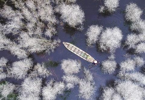Savour Vietnam, un concours pour immortaliser la beaute du pays hinh anh 1
