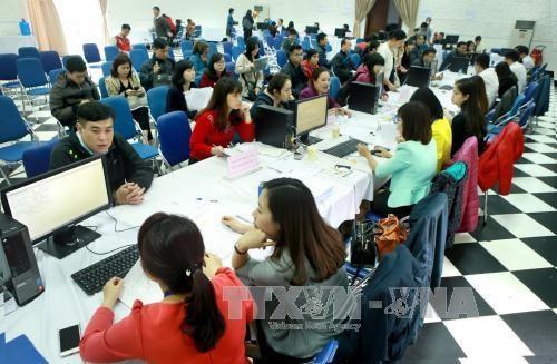 Un programme pour promouvoir l'application des TI dans les organes d'Etat hinh anh 1