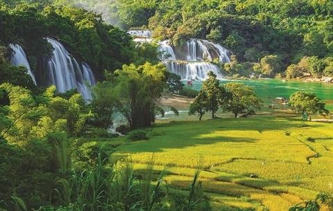 Savour Vietnam, un concours pour immortaliser la beaute du pays hinh anh 2
