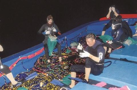 Ces plongeurs qui mettent les choses au poing avec des requins hinh anh 2