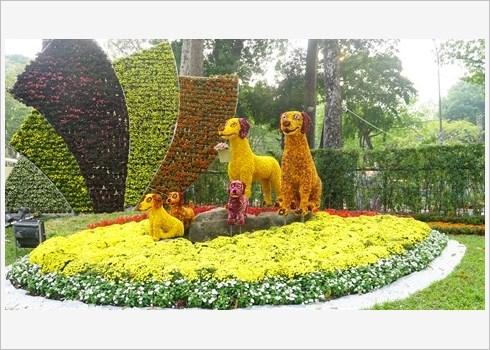 Festival des fleurs de Tao Dan, retour au printemps au Sud hinh anh 1