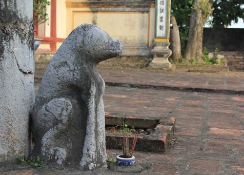 Le chien dans la culture vietnamienne hinh anh 1