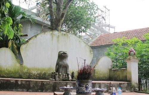 Le chien dans la culture vietnamienne hinh anh 2
