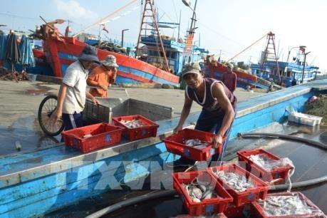 Le Vietnam realise les recommandations de la CE sur l'exploitation aquicole hinh anh 1