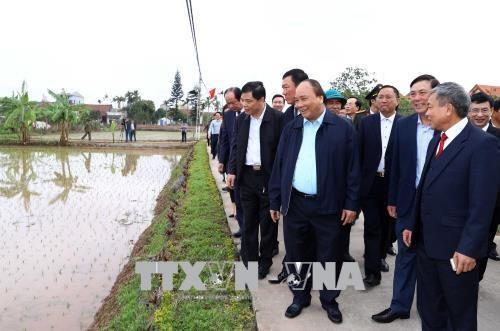 Le chef du gouvernement exhorte a faire de Hai Hau un district neo-rural modele hinh anh 1