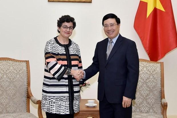 Le Vietnam veut davantage de soutien du Centre du commerce international hinh anh 1
