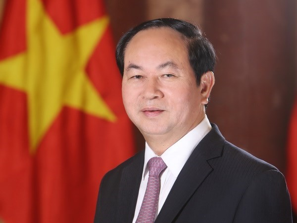 Le president Tran Dai Quang apprecie les initiatives de developpement de l'Inde hinh anh 1