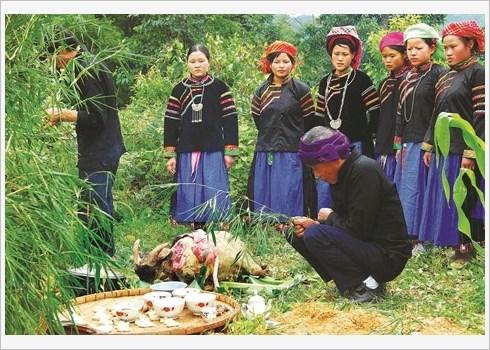 A Ha Giang, les Pu Peo celebrent le genie de la foret hinh anh 2