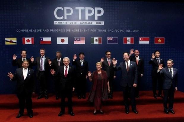 Le CPTPP reflete l'integration mondiale du Vietnam hinh anh 1