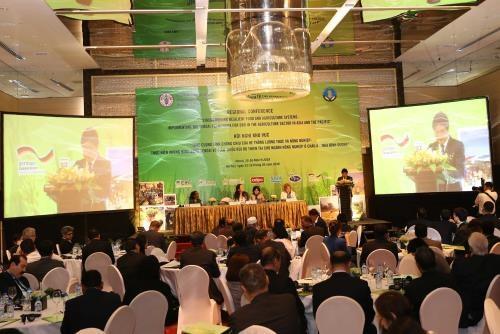 Reduction des risques de catastrophe dans le secteur agricole hinh anh 1
