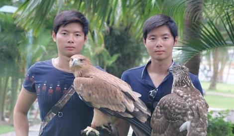 La fauconnerie fait des emules a Ho Chi Minh-Ville hinh anh 2