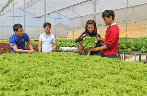 L'agriculture laboure le sillon des hautes technologies hinh anh 1