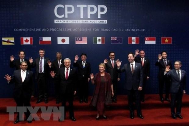 CPTPP, un nouveau niveau d'integration internationale du Vietnam hinh anh 1