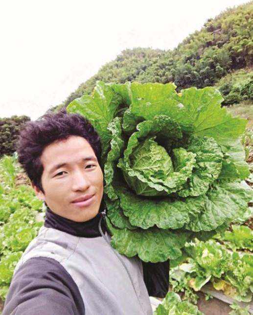 Quand un jeune Mong de Son La applique des technologies agricoles israeliennes hinh anh 2