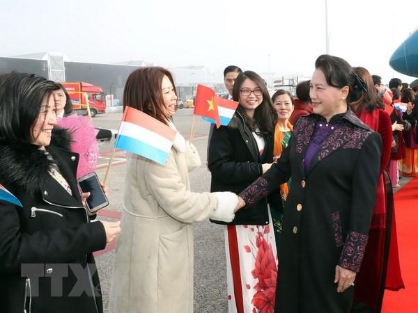 La presidente de l'AN entame une visite officielle aux Pays-Bas hinh anh 1