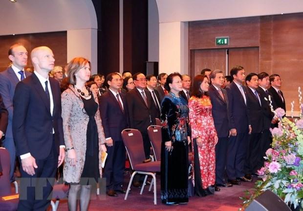 Celebration du 45eme anniversaire des relations diplomatiques Vietnam-Pays-Bas hinh anh 1