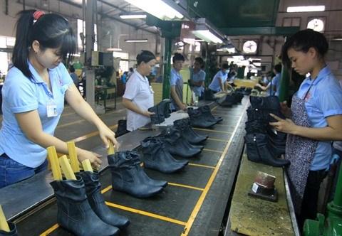 Le textile, la chaussure et le cuir se preparent a l'entree en vigueur du CPTPP hinh anh 2