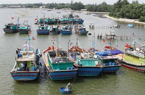 L'Association de la peche du Vietnam proteste contre les regles chinoises hinh anh 1