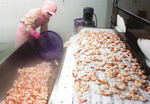 Exportations de crevettes, fruits et legumes : Bilan et perspectives hinh anh 2