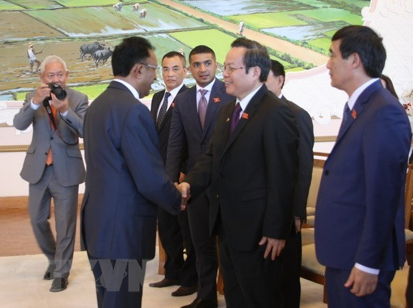 Vietnam et Madagascar promeuvent leur cooperation hinh anh 1