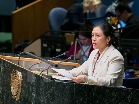 Le Vietnam appelle la reforme des operations de maintien de la paix hinh anh 1