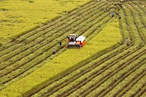 Publication de la liste des 23 finalistes du concours sur les technologies agricoles hinh anh 1