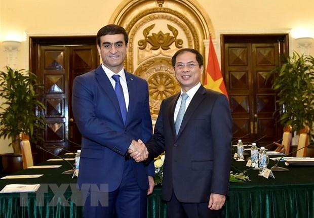Vietnam-Turkmenistan : consultation politique entre les ministeres des Affaires etrangeres hinh anh 1