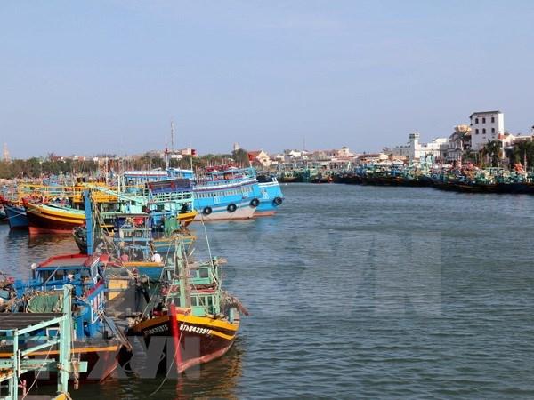 Le Vietnam va durcir les mesures contre la peche INN hinh anh 1